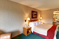 Slopeview Guestroom